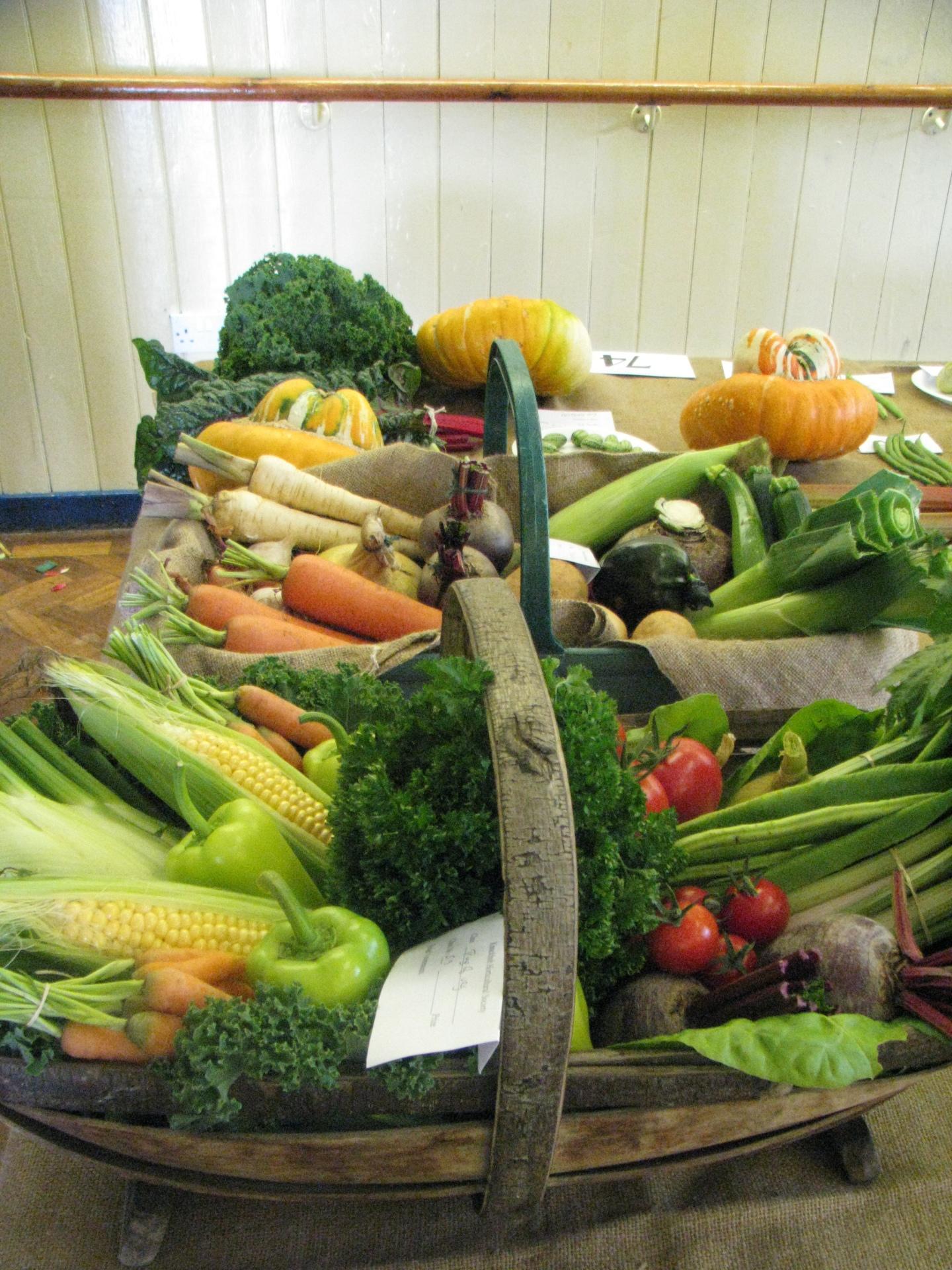 Knockholt Horticultural Society