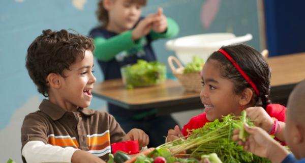 EChO Novel Initiatives to Combat Childhood Obesity