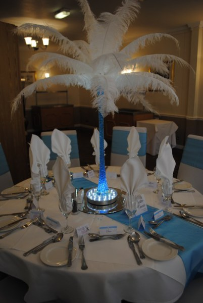 White ostrich feather displays