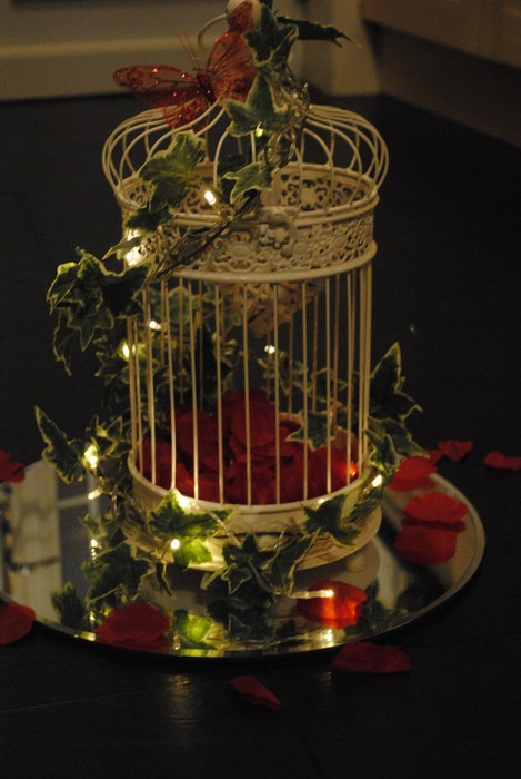 Vintage cream birdcage with Red rose petals inside & scattered