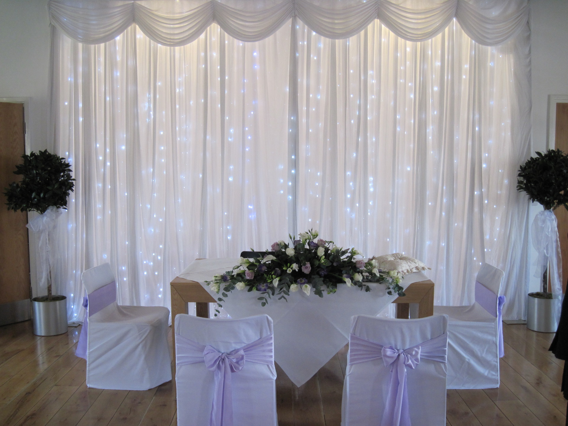 Civil Ceremony Twinkle Backdrop