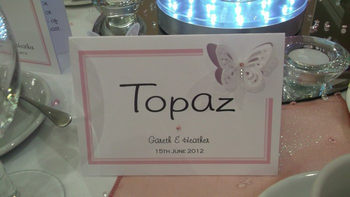 Vellum Butterfly Table Name Card