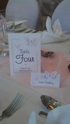 Vellum Butterfly table number and name card