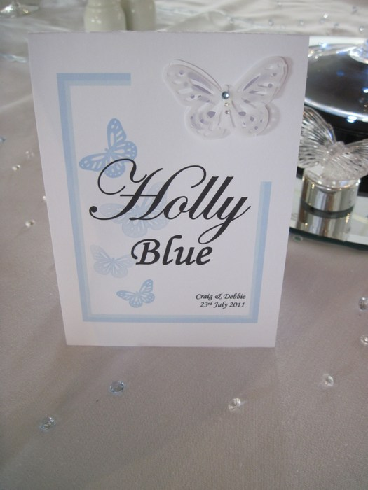 Vellum Butterfly table name