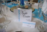 Diamante Feather Table Name Card