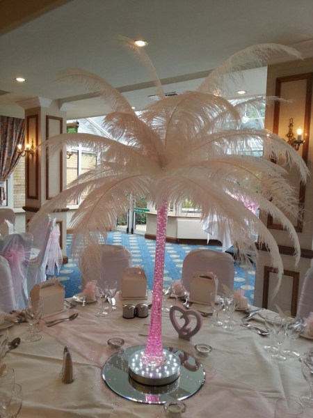 Ostrich feather Centrepieces with Baby Pink Stems