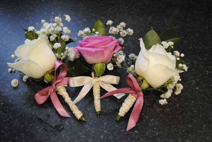 Buttonholes cream and fresh pink roses and gyp