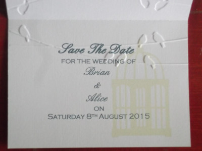 Birdcage Save the Date inside view