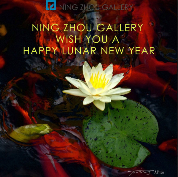 Happy Lunar New Year and Feng Shui Tips for your home in 2018