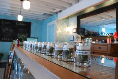 Green Goddess Remedies in Portland, Oregon