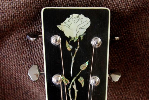 Signature Rose rose