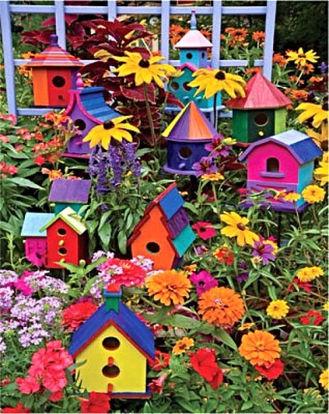 Creative Early Bird Oasis Birdhouse Making Class