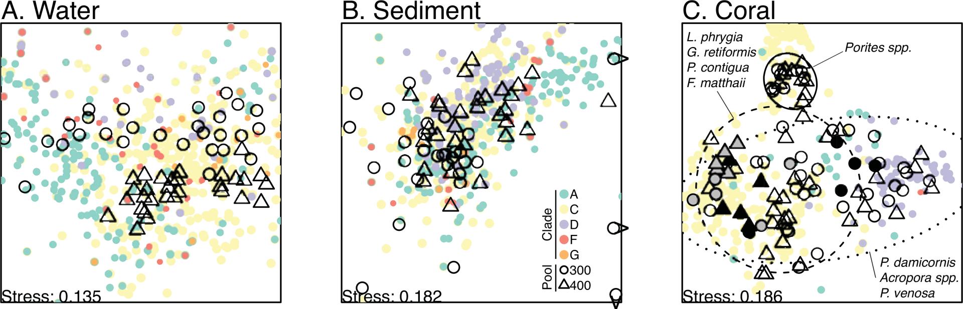 New paper on Symbiodinium metacommunities in American Samoa