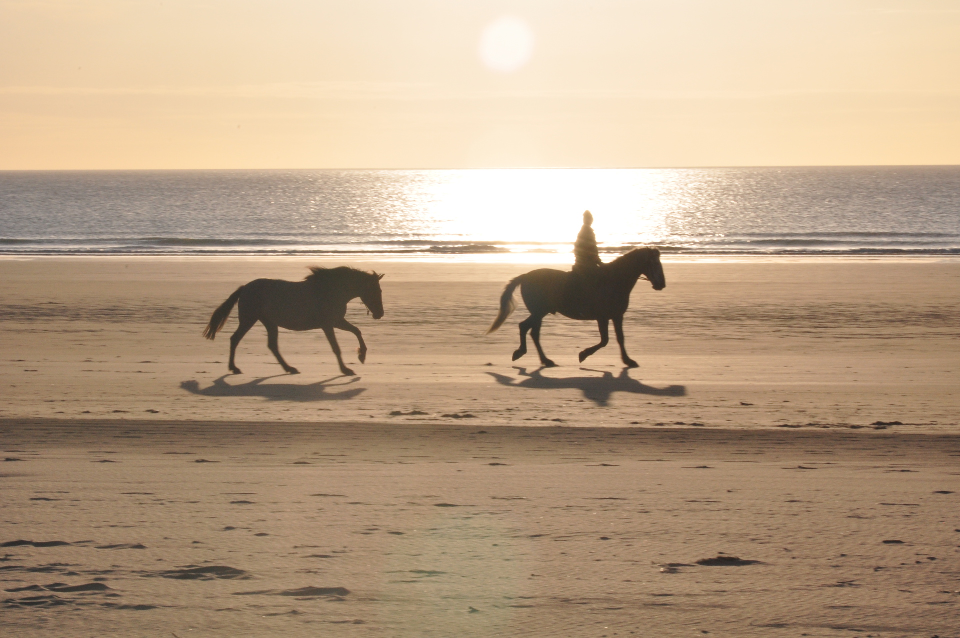 horse riding on beach cornwall gwithian sea sun set surf