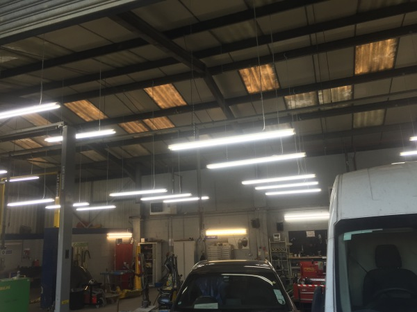 6ft Twin fluorescent light fittings with daylight lamps
