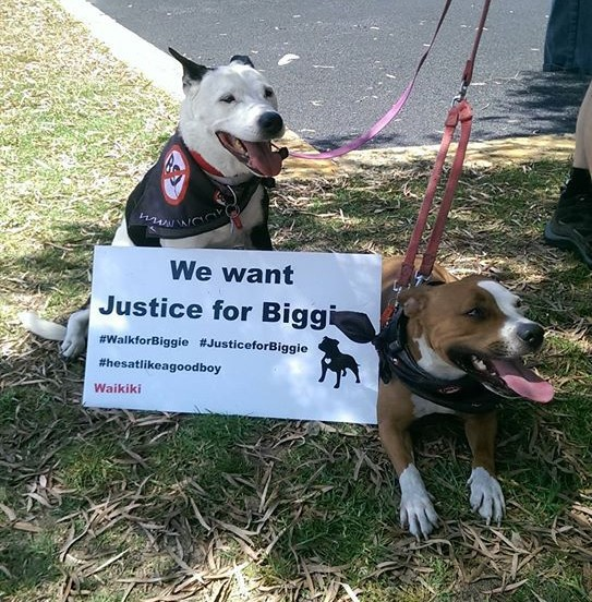 We Want Justice for Biggie