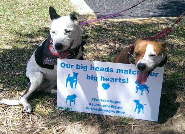 Our big heads match our big hearts.