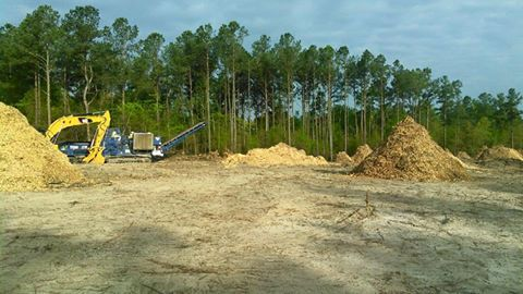 Mulch Chips Grinder Clearing Site Work