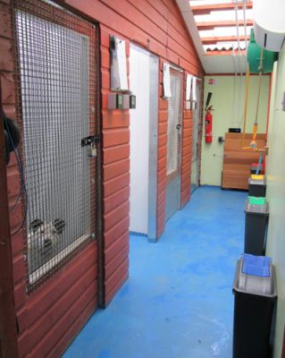 Hollin Hall Boarding Kennels Huddersfield each dog kennel has underfloor heating