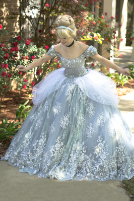 Fancy Ball Cinderella *requires proper space  (Specialty pricing)