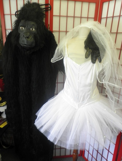 Gorilla and Ballerina