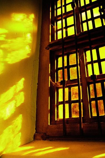 lea-delson-Mission-Dolores-Window-