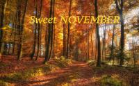 President Message for November