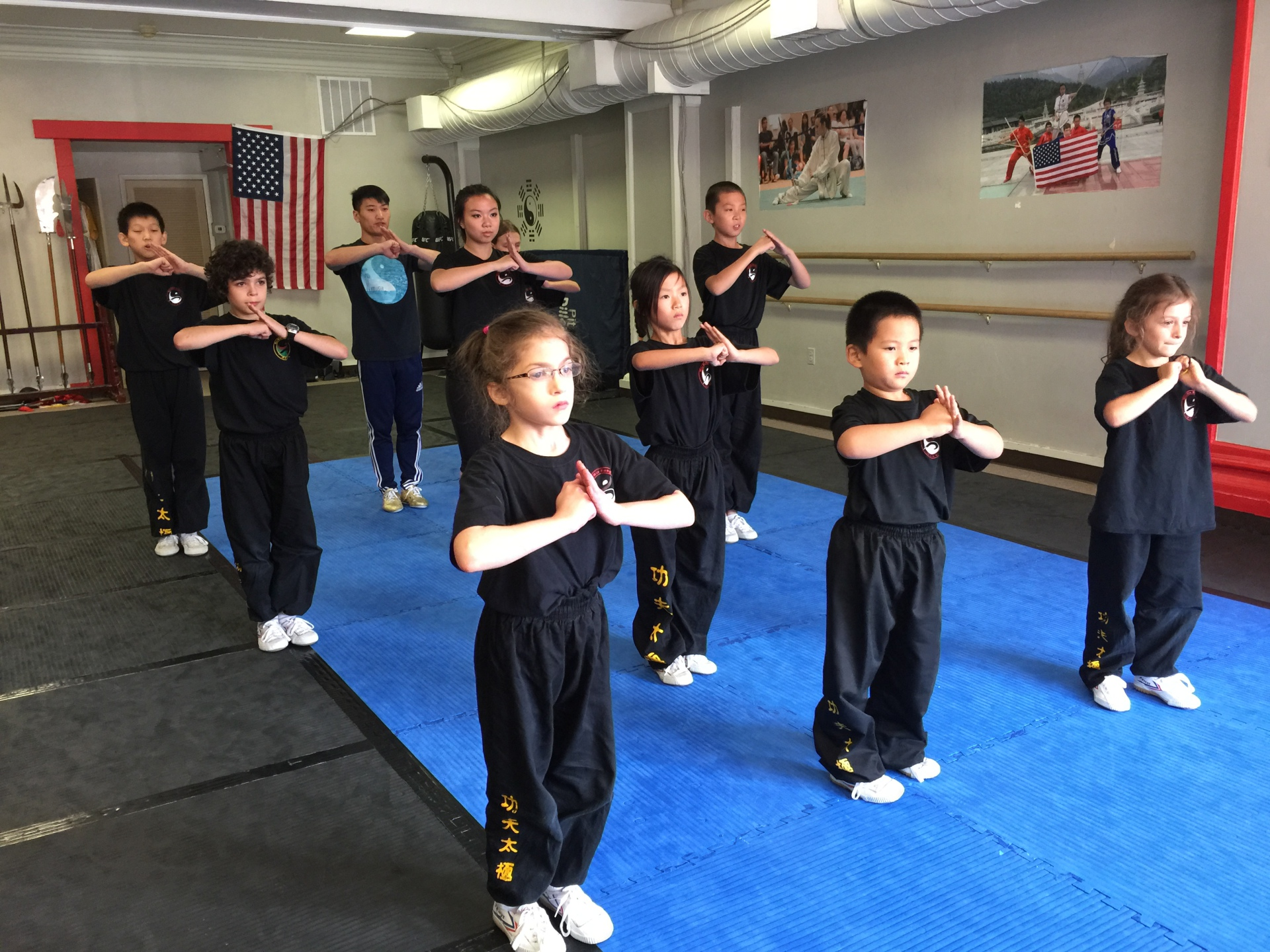 Wushu/kungfu classes