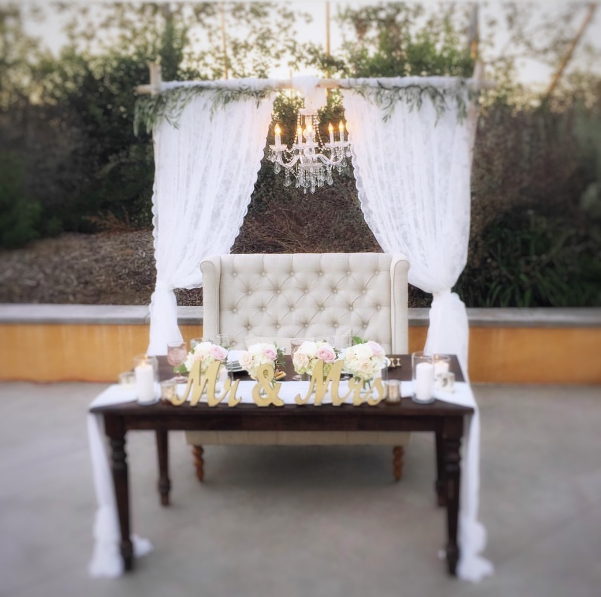 Birch arch lace curtains