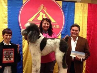 Michelle Hirsch-Hart Owner, Certified Master Groomer