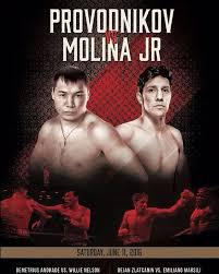 Provodnikov Molina  Jr. & Boxing Weekend Predictions