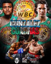 Gonzalez vs Cuadras / Golovkin vs Brook Predictions