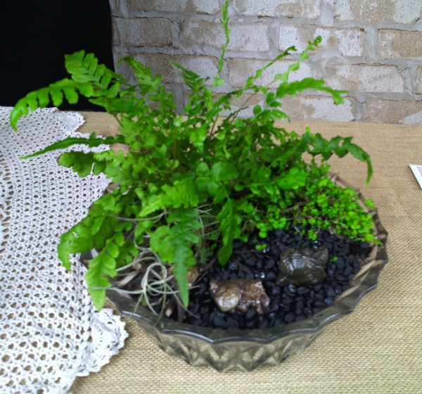 Bridal table fern and fossil garden in antique crystal