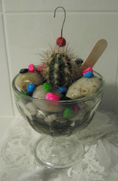 Birthday Gift - Cactai sundae