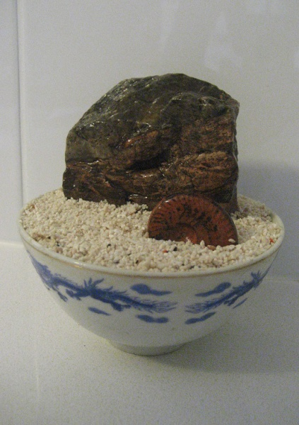 Suiseki & ammonite in noodle bowl