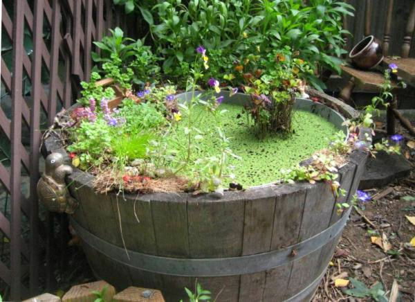 Fantasy garden and mini-pond in half-barrel