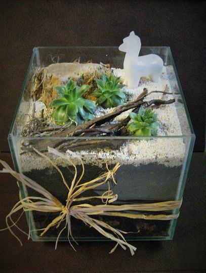 Birthday Gift - Succulent desert with alabaster lllama