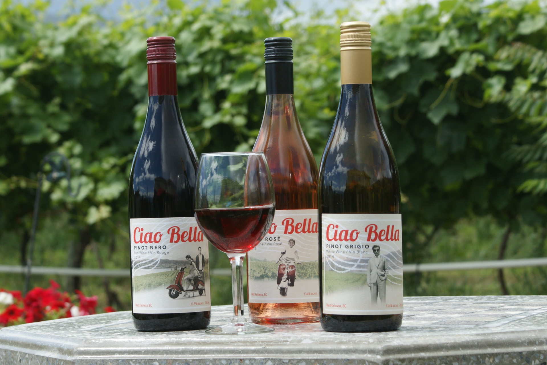 Award Winning Ciao Bella Wines