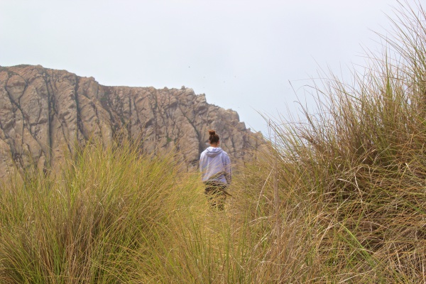 Morro Bay.