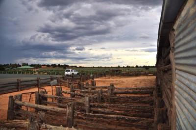 Mungo Historical Shearing Shed