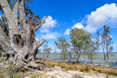 Yanga National Park, Balranald, NSW