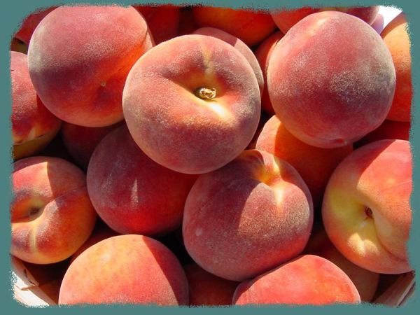 Fresh Palisade Peaches