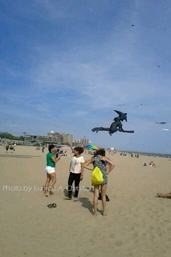 Coney Beach Kite Club
