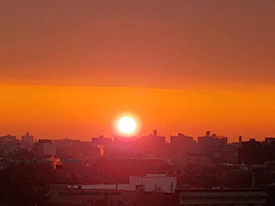 Image of an orange sky with the bright sun shining through.