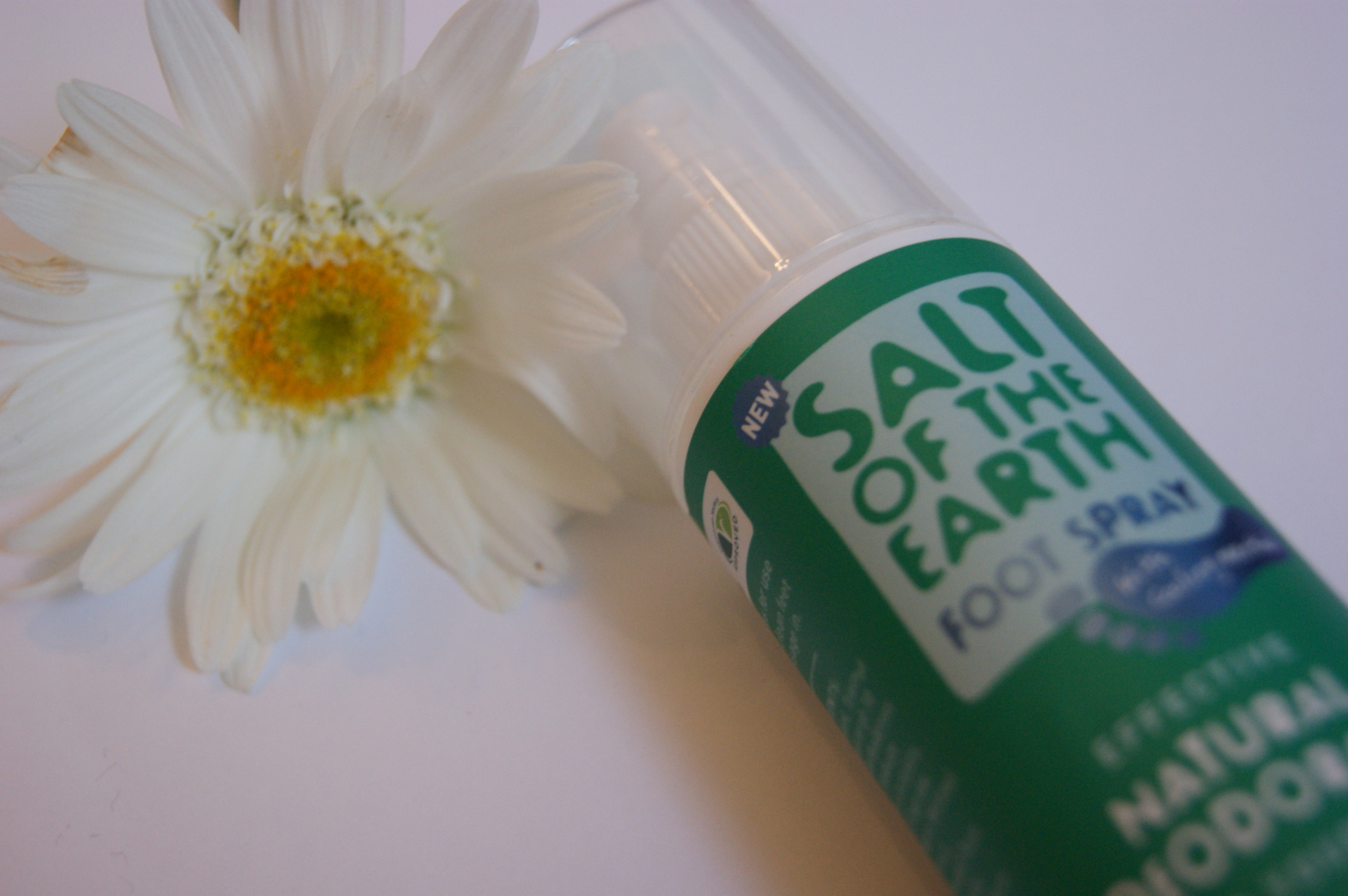 Salt of the Earth - Foot Spray
