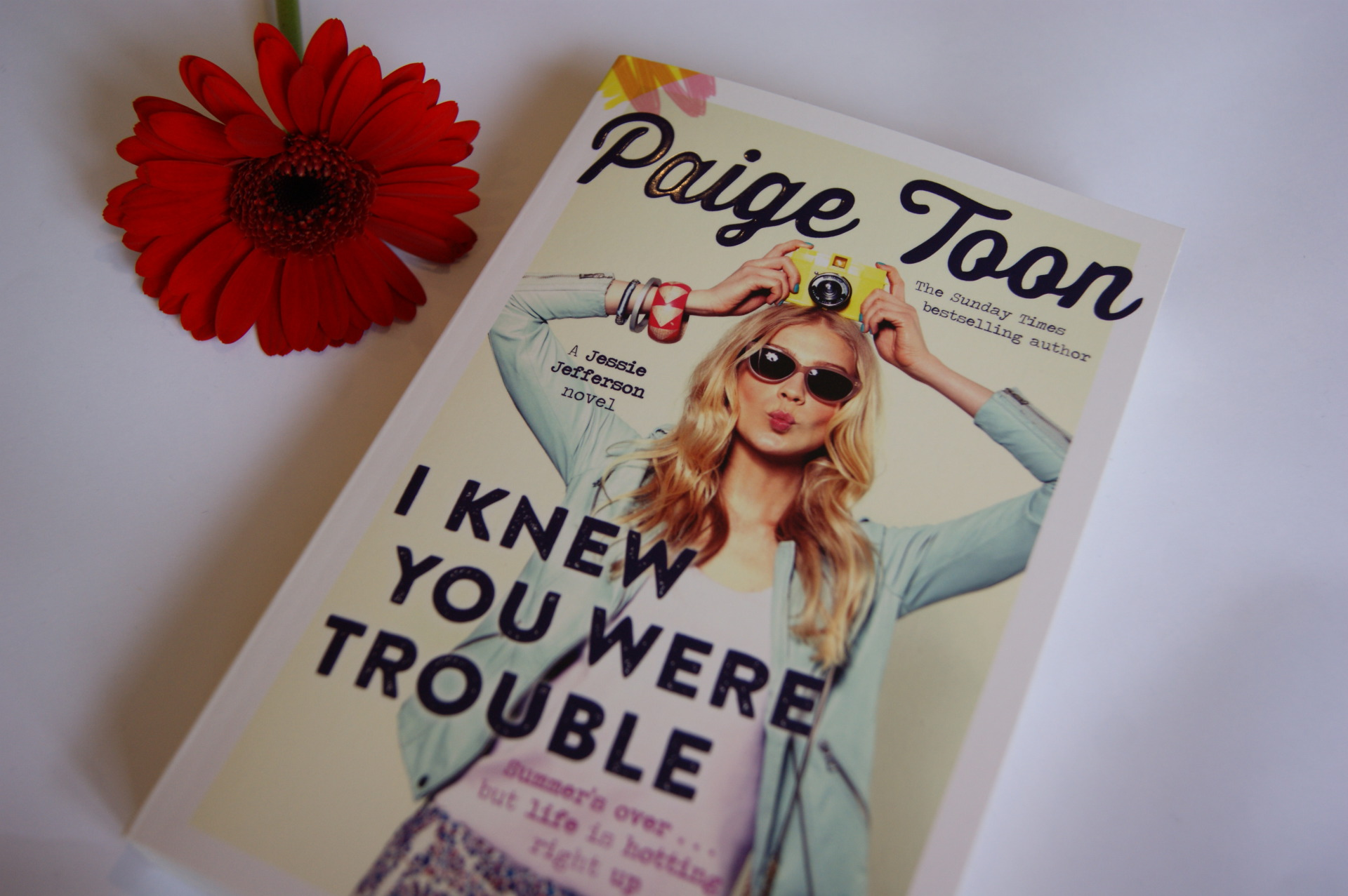 Paige Toon - I knew you were trouble - Book Review