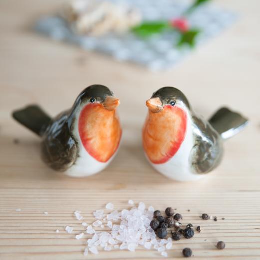The Contemporary Home - Ceramic Robin Salt And Pepper Set