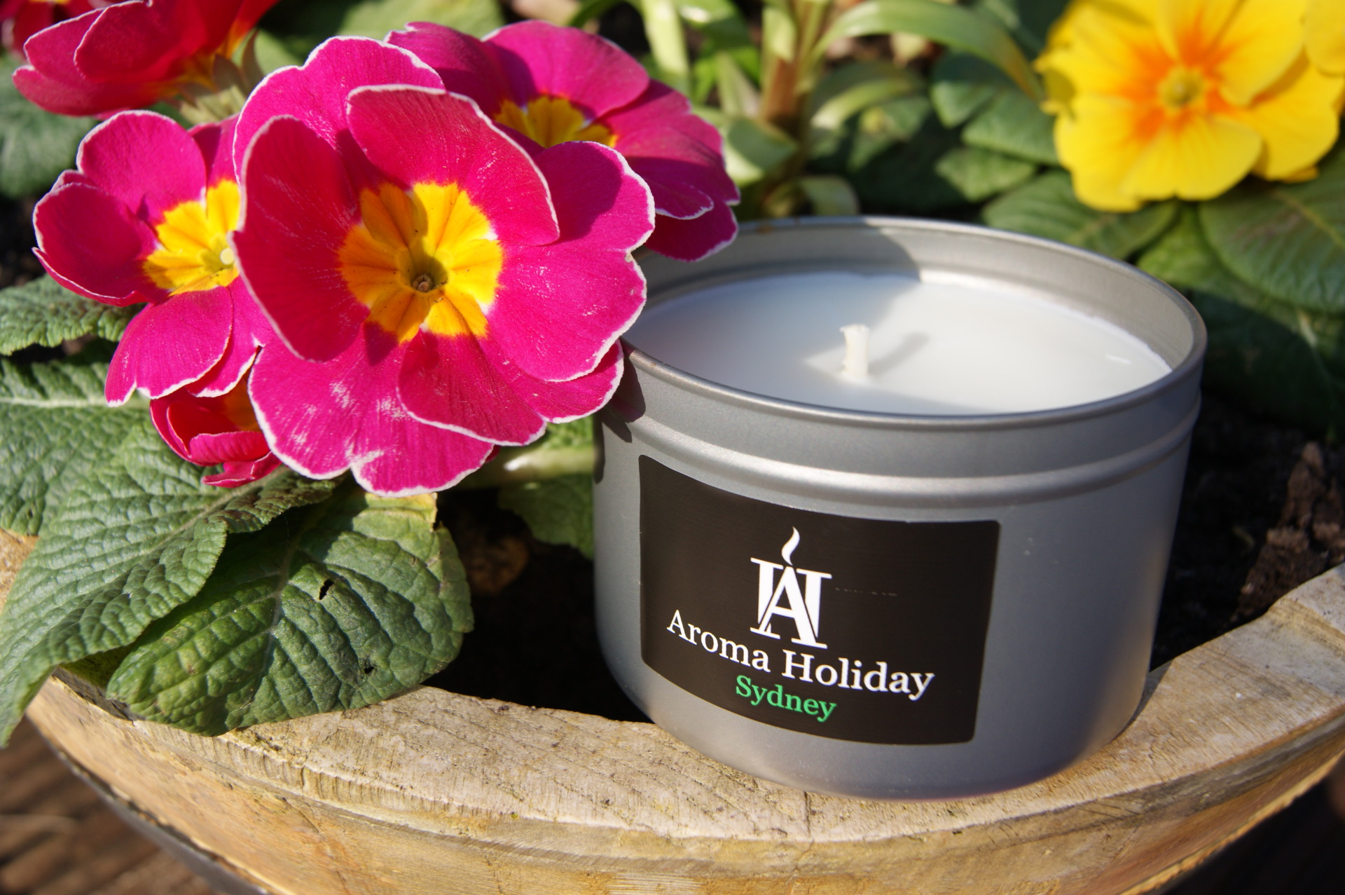 Aroma Holiday Candles