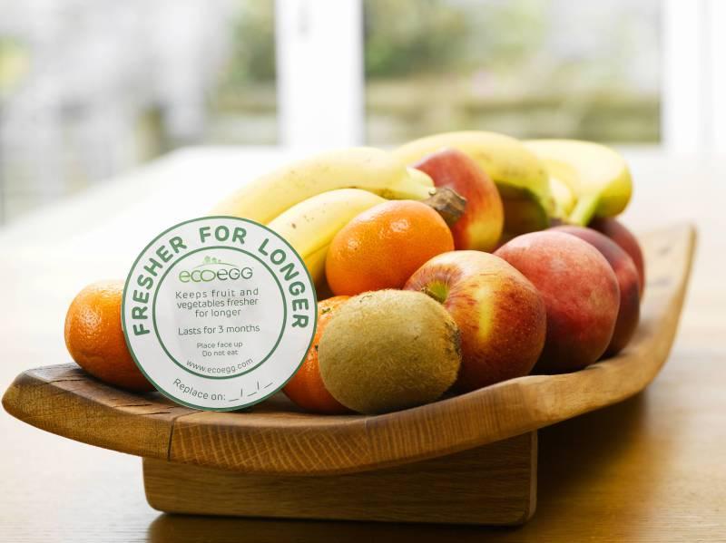 Eco Egg Fresher For Longer Discs