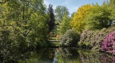 Herfst shootdag Arboretum Trompenburg.